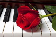Rose Art - Red rose on piano keys by Garry Gay