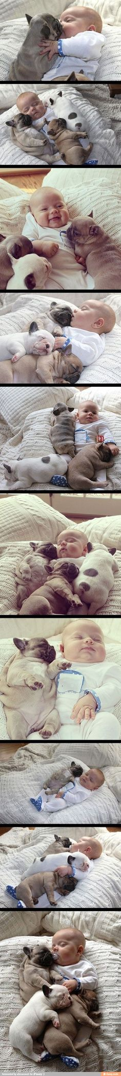 1 baby = 3 puppies. #mathskills