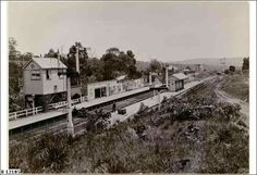 Mount Barker Junction Railway Station in the 1910s.Adelaide to Wolseley line serving the South Australian city of Mount Barker. •State Library of South Australia•