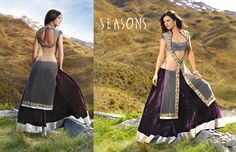 Amazing Season Saree Collection