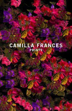 camilla frances - prints