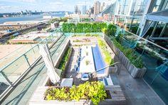 Farming Up, Future Green Studio, Ink48 Hotel, Press Lounge Restaurant, Repurposed Rooftop Pool Farm - http://architectism.com/repurposed-rooftop-pool-farm/