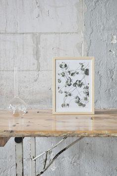 Plant-Series---Studio-Joop-by-Designer-Anniek-Beije-8