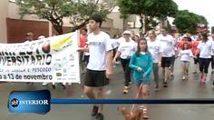 Uma passeata de Combate ao Câncer reuniu diversas pessoas em Araçatuba.