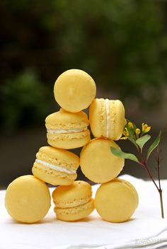 Lovely Lemon Macarons, we just need some ice tea to go with them...