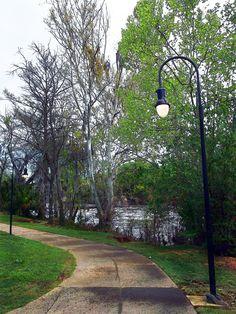 The Riverwalk in Albany, Georgia