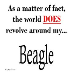 Well mine revolves around my beagle cross...but close enough. :) love my beaglier
