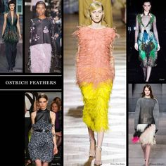Ostrich Feathers - Fall 2013 Trends - The Cut