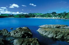 Waiheke Island ♥ ♥