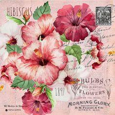 447 mejores imágenes de flores en la cabeza | Flores en la