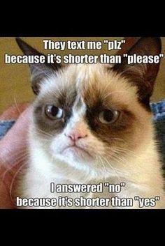 27 Grumpy Cat Funny Memes 23 #Grumpy cat #jokes #funny #group
