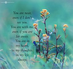 Always........touchinsouls.com   QUOTES