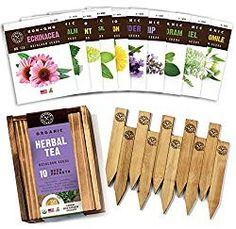 Herb Garden Seeds for Planting - 10 Medicinal Herbs Seed Packets USDA Organic Non GMO, Wood Gift Box, Plant Markers - Herbal Tea Gifts for Tea Lovers, Herb Growing Kit Indoor Garden Starter Kit Herb Seeds, Garden Seeds, Planting Seeds, Bamboo Seeds, Bamboo Plants, Wood Gift Box, Wood Gifts, Organic Herbal Tea, Organic Herbs