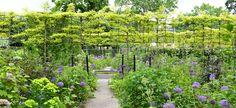 Fabulous espalier garden