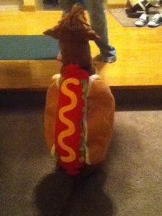 what a HOT dog.