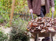 Faire un bon compost nourrit les plantes et permet de faire des économies ! Comment bien le fabriquer avec les bons déchets.