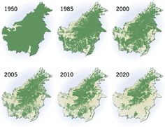 Borneo (Kalimantan): Deforestation at an alarming rate. Proud to see Sabahans largely keepin' it real. Indo is smashing it tho.