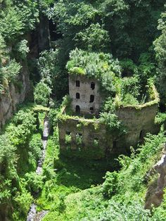 Abandoned mill in chasm in middle of Sorrento by Riverwest