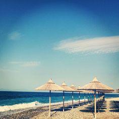 Baybeez sunbeds and Umbrellas Pine Forest, Beach Bars, Umbrellas