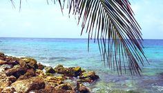 Beachlife op dushi Curacao: Dit zijn de 11 mooiste stranden van dit Caribische eiland