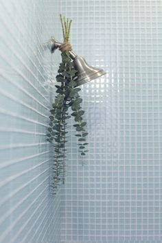 Hang the eucalyptus upside down by tying it to your shower head with twine. When you run your shower, the steam will rise up towards the eucalyptus, filling your bathroom with the most refreshing, relaxing scent.