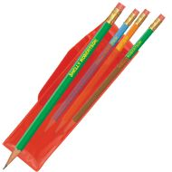 Personalized Pencils - gift from teacher to students, Christmas