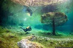 Znalezione obrazy dla zapytania podwodny park