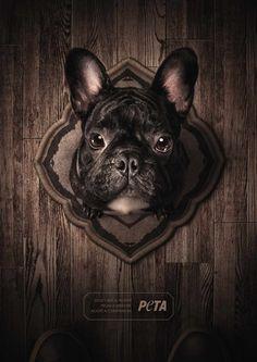 PETA: Trophies - Bulldog