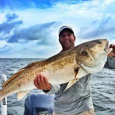 louisiana fishing charters Fishing Charters, Red Fish, Trout, Louisiana, Brown Trout, Goldfish