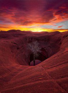Lovely desert, by Marc Adamus.