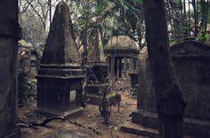Maciej Chudy, Kolkata, Kalkuta, Indie,