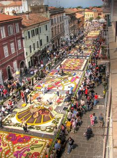 230 Years Old tradition, a photo from Rome. A large view of the Genzano Flower Festival (Infiorata), this happens every year from the 1778. In this image some carpet of flowers are still in work from the local artists.