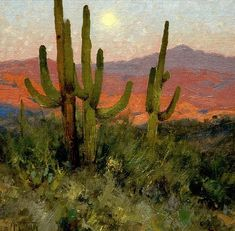 Study Online With Matt Smith from your studio to his easel. Learn to paint landscapes with color, light, atmosphere and depth. Click to see all details.