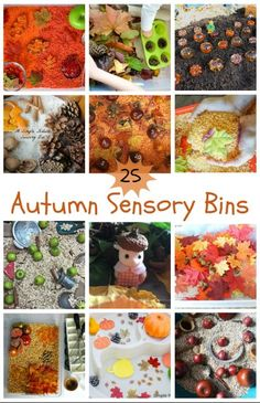 25 autumn sensory bin ideas for babies, toddler and preschoolers. Enjoy the colours, smells and textures of fall with these fun autumn sensory bin ideas.
