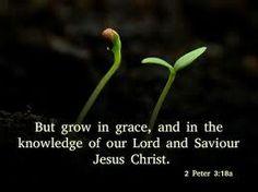 3. SPIRITUAL GROWTH http://www.somemetimenyc.com/simone-s-gray-blog/all-i-want-for-christmas