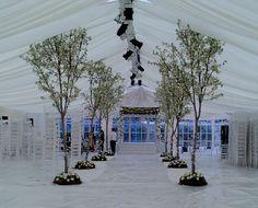 Palmbrokers - Event Props and Plants Hire - Portfolio Wedding Reception Flowers, Wedding Venue Decorations, Tree Wedding, Forest Wedding, Wedding Themes, Wedding Venues, Wedding Ideas, Wedding Stuff, Wedding Aisles