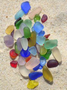 Incredible colors in these bay treasures from Mornington Peninsula, Australia