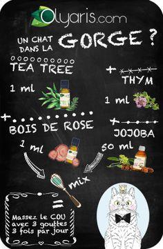 Hum, hum … Cette gêne dans la gorge ne miaule pas, mais commence à vous insupporter. Olyaris vous en débarrassera avec cette recette d'huiles essentielles et végétales contenant du tea tree.