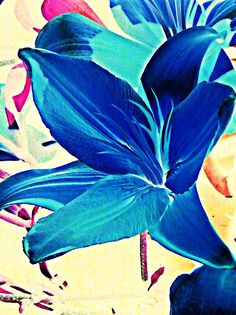 Digital Lily in Blue    by S Loft