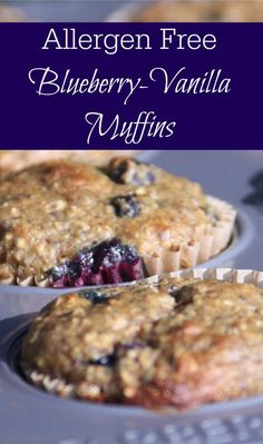 These moist, delicious, protein packed allergen free blueberry muffins are the perfect solution for a quick breakfast or healthy muffin recipe for a snack.