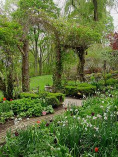 garden arch Gardens by Judy Tomkins Garden Structures, Garden Paths, Garden Art, Garden Landscaping, Garden Design, Landscaping Ideas, Beautiful Landscapes, Beautiful Gardens, Garden Arches