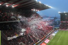 Standard Liege Soccer Stadium, Basketball Court, About Football, Hs Sports, Pictures