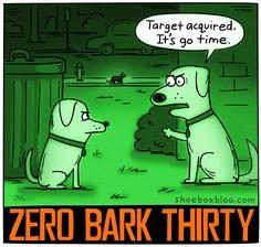 Zero Bark Thirty