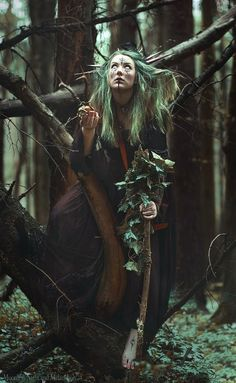 Image de celtic, nature, and pagan