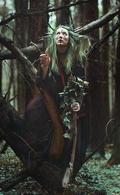 Image de celtic, nature, and pagan