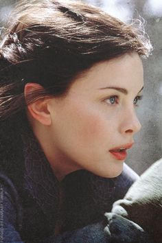 Arwen (Liv Tyler). A character who isn't in the books much, but in the films loads. No complaints here.
