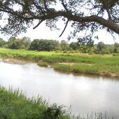 Sabie river Skukuza