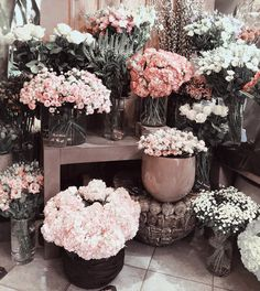 flowers #flower #petal #petals #nature #beautiful #love #pretty #plants #blossom #sopretty #spring #summer #flowerstagram Fresh Flowers, Pink Flowers, Beautiful Flowers, Exotic Flowers, Bloom Where You Are Planted, Plants Are Friends, Photo Images, No Rain, Blossom Flower