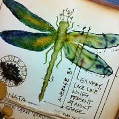 Richele Christensen: Stamping with Distress Markers -- gorgeous dragonfly