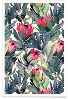 Painted Protea Pattern en Affiche premium par Micklyn Le Feuvre | JUNIQE